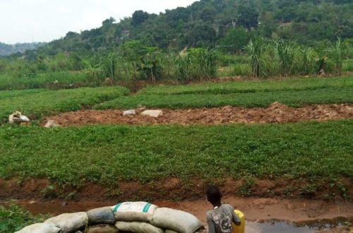 Article : Kinshasa : sans eau ni électricité, les habitants de Mont Ngafula et Selembao sont oubliés